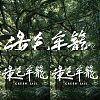 台北电影节