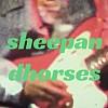 羊与马群 Sheep & Horses