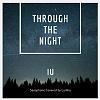 IU - Through the Night (Alto saxophone cover)