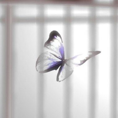 Caged Butterfly