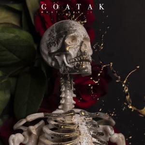 Goatak - What can i ?