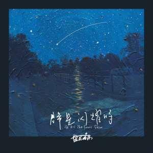 午夜情歌(Midnight Love Song)