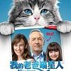 2016年电影作品|我的老爸喵星人|中文宣传曲|躲猫猫