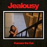 你的一切都让我嫉妒Jealousy(Demo)