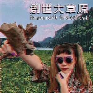 Minecraft Grassland