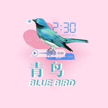 青鸟(Bluebird)-阎羽晨/Massica