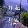 胭脂虎RougeTiger - 山花(Alpine Blossom)