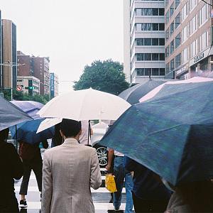 晚上会下雨吗 (demo)